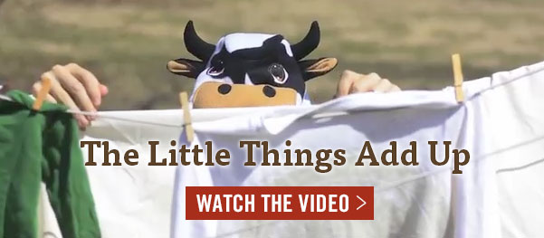 Little things add up - watch the video!