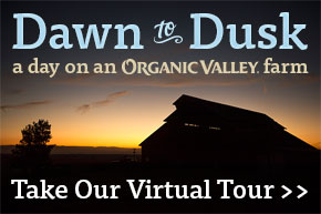 Organic Valley Virtual Farm Tour