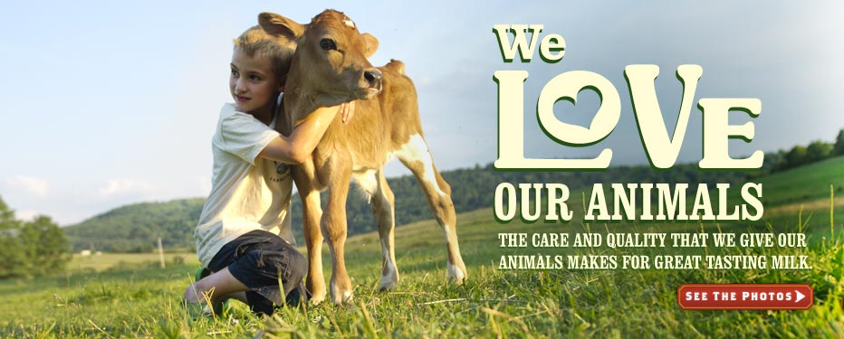 Organic Valley: WE Love Animals